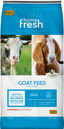 Livestock Feed | Free Hand Delivery over $49 | - Omni Feed