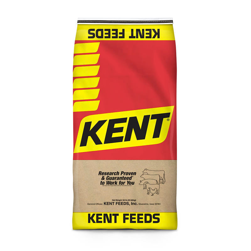Kent 34 Lamb Supplement