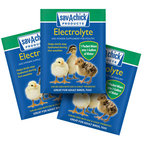 Save-A-Chick Electrolytes 3-Pack strip