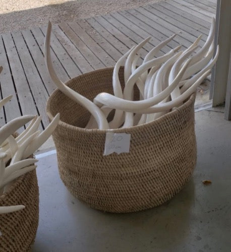 Loose White Inner Kudu Horns