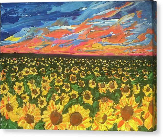 Field Of Suns - Canvas Print
