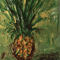 Funky Pineapple - Artwork
