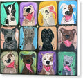 The Faces Of Rescue  - Canvas Print