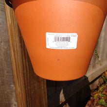 PR-9031 PotRing for 8.25 Inch Terracotta Pot - Black