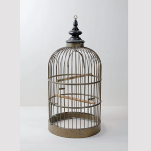 Vintage birdcage hire for decoration at events and weddings Berlin Germany