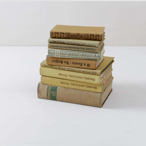 Vintage book hire bundle Berlin Germany (1498336788516)