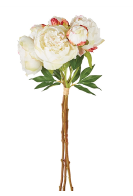 Peonies Bunch-Cream