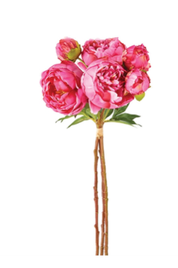 Peonies Bunch-Pink