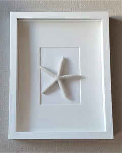 WHITE STARFISH SHADOW BOX : paper plate starfish - pezcame.com