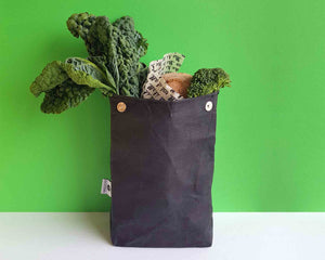 Lunch Bag - Washable Paper