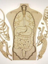 What's Inside Me; Human Anatomy Puzzle.