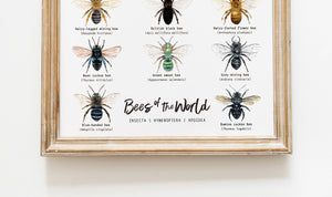 Bees Of The World Version 2