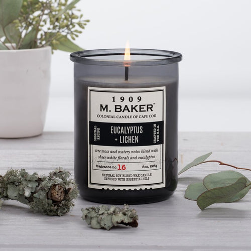M Baker Colonial Candles of Cape Cod 8oz Eucalyptus & Lichen Apothecary Candle