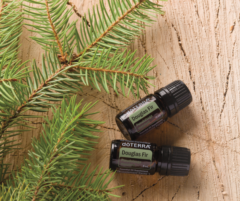dōTERRA Douglas Fir Essential Oil - 5ml (NFR)