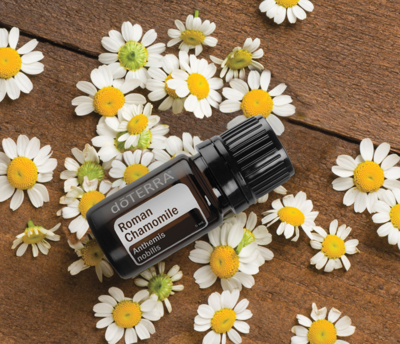 dōTERRA Roman Chamomile Essential Oil - 5ml (NFR)