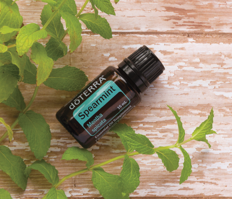 dōTERRA Spearmint Essential Oil - 15ml (NFR)