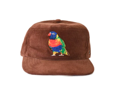 The Stash Cap Brown Rainbow