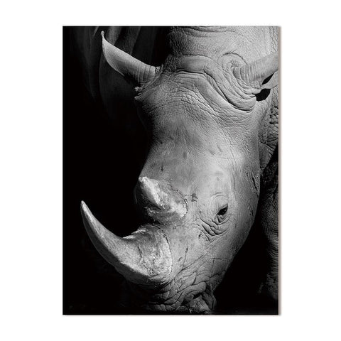 Black And White Canvas - Animals - Rhinos - Raw Deco Lab