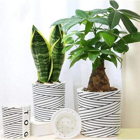 Carline Nordic Design Striped Flower Pots - Raw Deco Lab