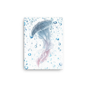 Canvas: JellyFish