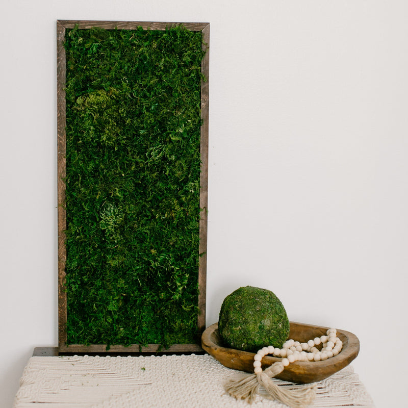 Preserved Moss Wall Art Hanging