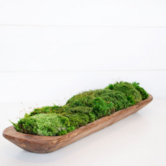 Preserved Moss Dough Bowl