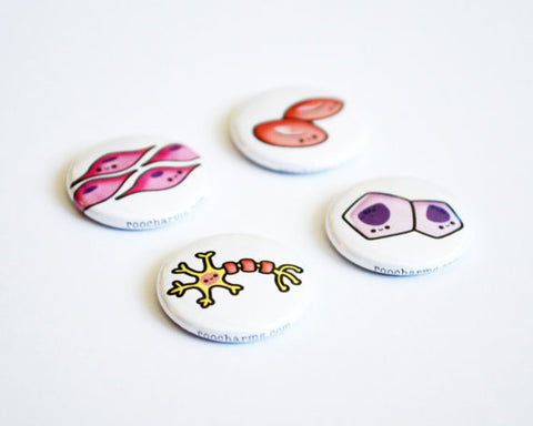 Magnet Set, Button Set, Histology, Biology Gift, Cell Biology, Science Gift - roocharms