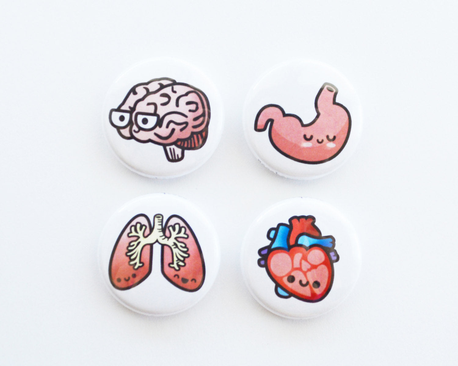 Magnet Set, Button Set, Heart, Brain, Lung, Stomach, Biology Gift, Anatomy Gift, Medical Student Gift - roocharms