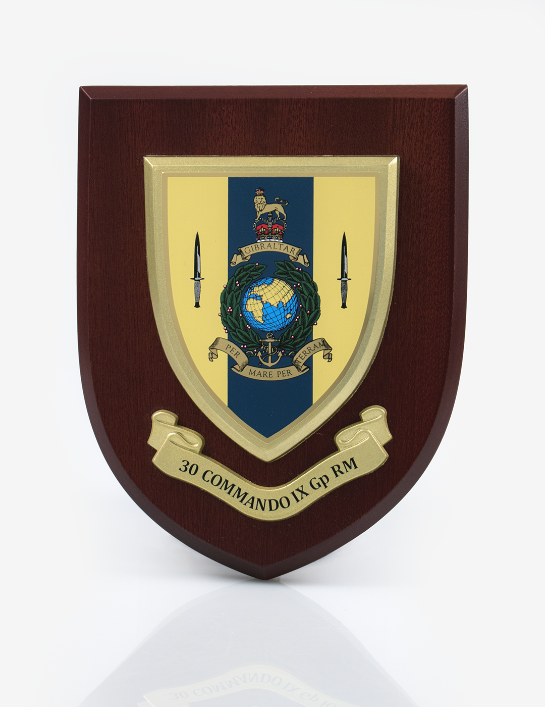 30 Commando IX Group Plaque