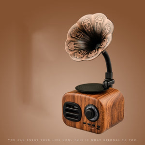 New Antique nostalgic small stereo Bluetooth 5.0 wooden retro phonograph wireless speaker plug in radio card
