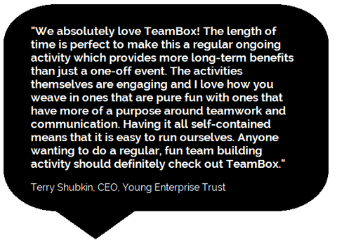 We absolutely love TeamBox!  Terry Shubkin, Young Enterprise Trust
