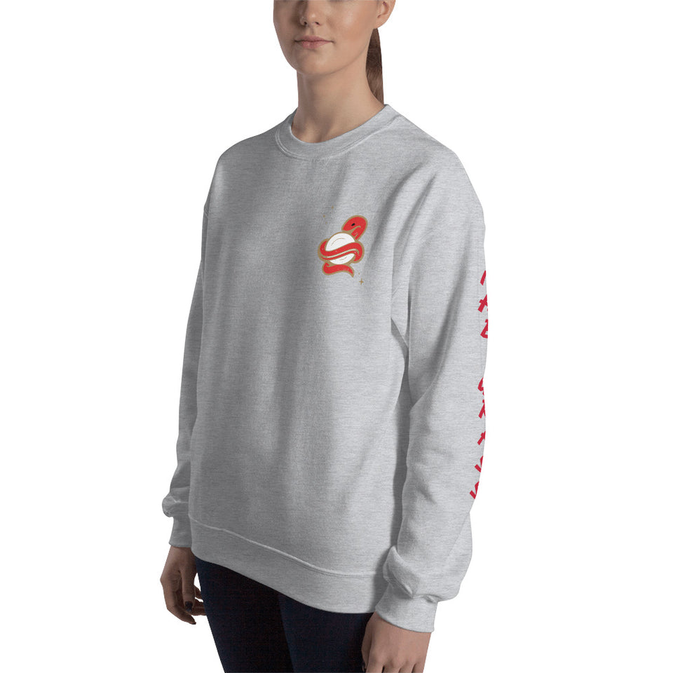 SNAKE SLEEVES SWEATSHIRT • 3 color options
