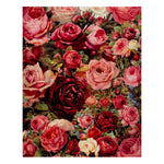 Multicolored roses (40x50cm|16x20inch) | DIY Acrylic Paint by Number - Bambuce