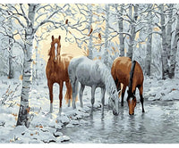 Horse collection | 18 options | DIY Oil Paint by Numbers