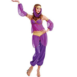 Steamy Genie Women's Halloween Costume Dreamy Arabian Dancer Harem Dress Gown Purple Large