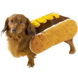 Casual Canine Hot Diggity Dog with Mustard Costume for Dogs, 14