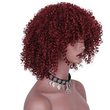 AISI HAIR Synthetic Afro Curly Hair Wigs Full Red Wig Short Curly Wigs for Women Kinky Curly(red)