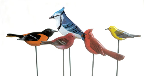Birds for the garden