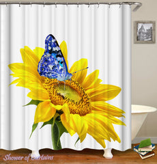 blue-against-yellow-sunflower-shower-curtains