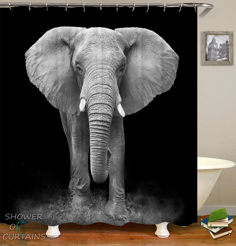 Elephant Shower Curtain Print - Black And White Elephant Photoshoot