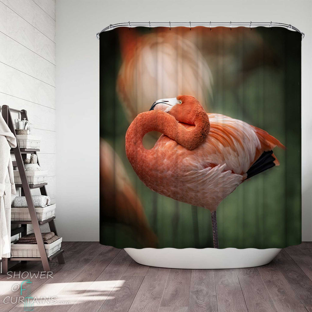 Shower Curtains with Wild Flamingo Shoot