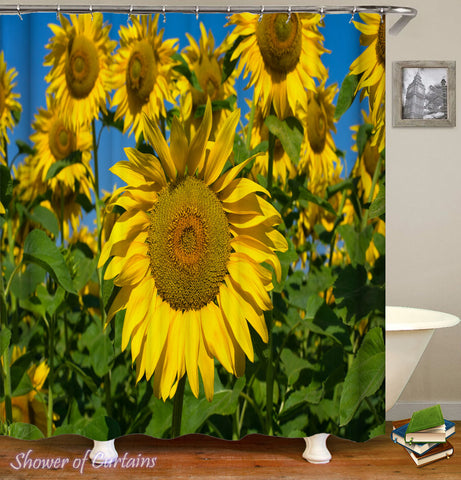 Sunflower Shower Curtain of Sunflower Shoot