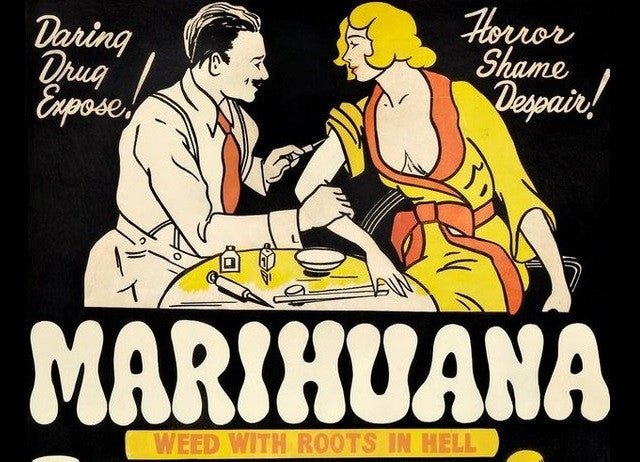 Did you know that no one knows where the word 'marijuana' comes from?