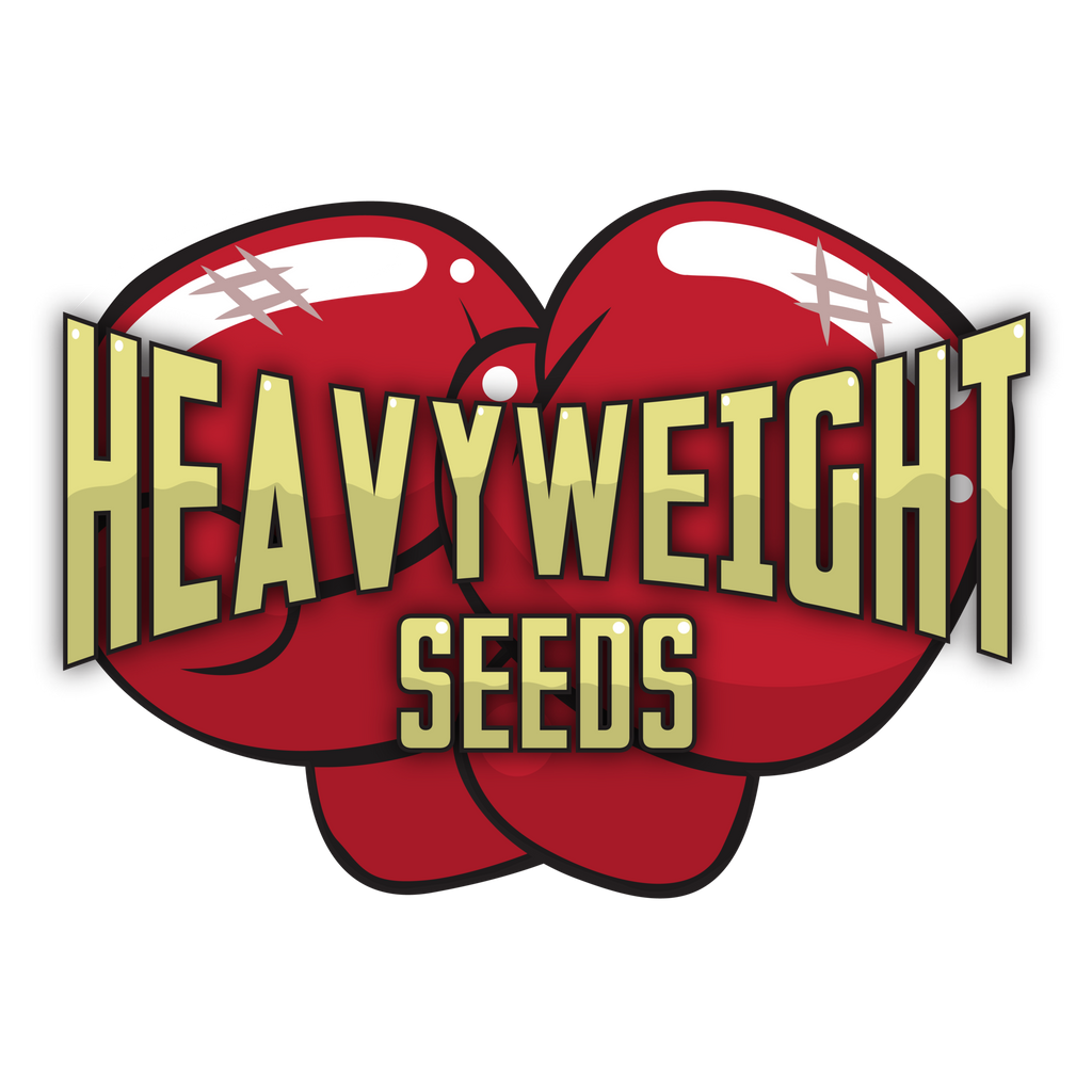 2x Free Heavyweight Seeds