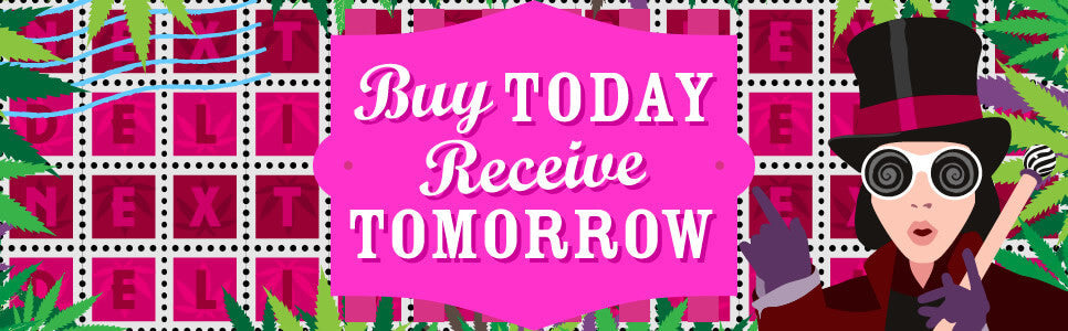 Buy Today - Receive Tomorrow!
