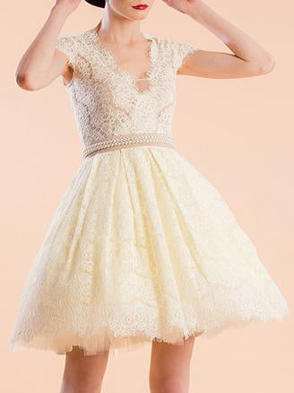 Waisted Lace A-line Mini Evening Dress