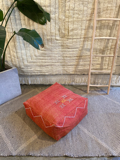 red cactus silk cotton dog bed