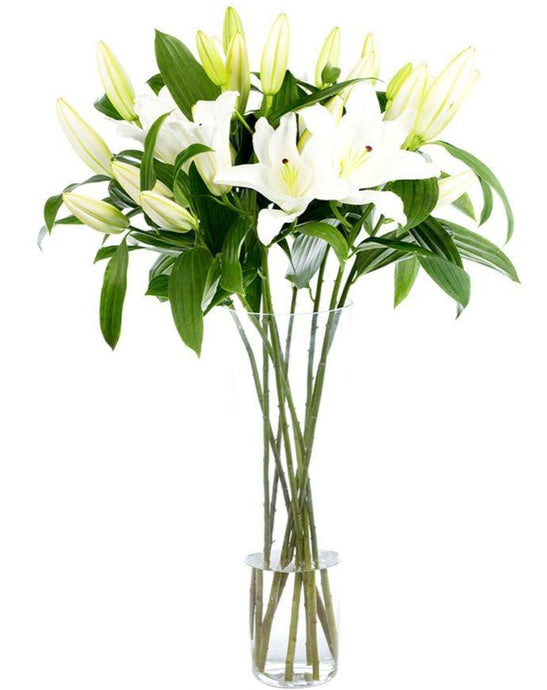 Bouquet de Lys Blancs