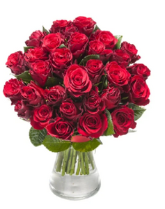Short Stem Red Rose Bouquet