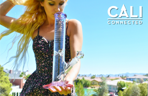 "UPC Colored Purple 14"" inch Straight Tube Water Pipe - 5mm Thick Borosilicate Glass 50mm Diameter Tubing with Triple Pinched Ice Catcher at CaliConnected Online Headshop"